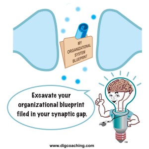 SynapticGapBOB2